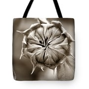 Amazing Sunflower Bud Tote Bag