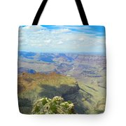 Amazing Views Tote Bag