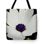 Amazing White African Daisy Tote Bag