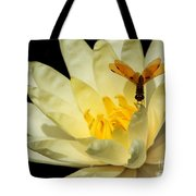 Amber Dragonfly Dancer Too Tote Bag
