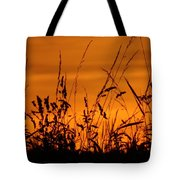 Amber Sundown Meadow Grass Silhouette  Tote Bag