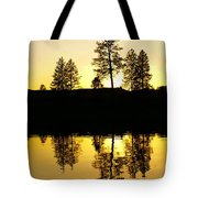 Amber Sunset Tote Bag