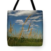 Amber Waves Of Grain Tote Bag