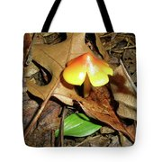 Amberina Mushroom - Tiny Jewel In The Forest Tote Bag