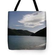 America Point Cinnamon Bay St John Usvi Tote Bag