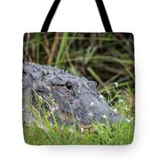American Alligator Tote Bag