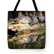 American Alligator With Caterpillar Tote Bag