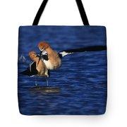 American Avocet Love Cross Tote Bag