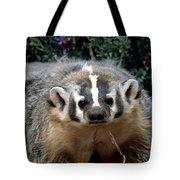 American Badger On Alert Tote Bag