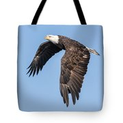 American Bald Eagle 2017-5 Tote Bag