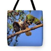 American Bald Eagle 3 Tote Bag