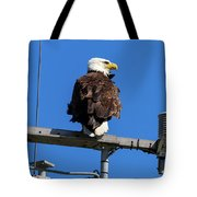 American Bald Eagle On Communication Tower Tote Bag