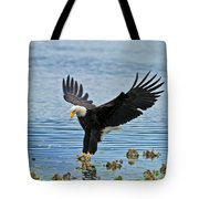 American Bald Eagle Sets Down On Fish Tote Bag