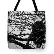 American Bald Eagle Tote Bag
