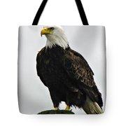 American  Bird Tote Bag