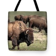 American Bison 5 Tote Bag by James Sage