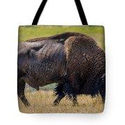 American Bison - Antelope Island - Utah Tote Bag
