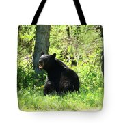 American Black Bear Tote Bag