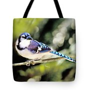 American Blue Jay On Alert Tote Bag