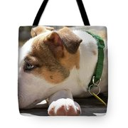 American Breed Puppy Tote Bag