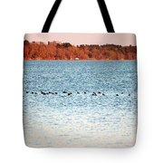 American Coots Crossing Lake Tote Bag