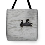 American Coots  Tote Bag
