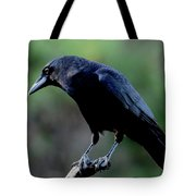 American Crow In Thought Tote Bag
