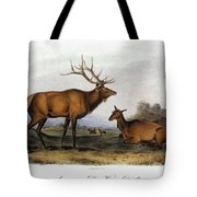 American Elk, 1846 Tote Bag