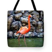 American Flamingo Tote Bag