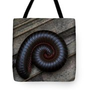 American Giant Millipede Tote Bag by April Wietrecki Green