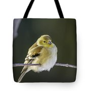 American Gold Finch Tote Bag
