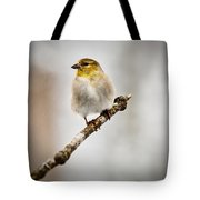American Golden Finch Winter Plumage 6 Tote Bag