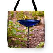American Goldfinch At Water Bowl Tote Bag