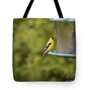 American Goldfinch No Food  Tote Bag
