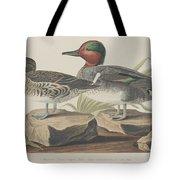 American Green-winged Teal Tote Bag