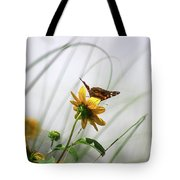 American Lady Butterfly Balancing By The Sea  Tote Bag