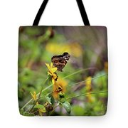 American Lady Butterfly Seaside Tote Bag