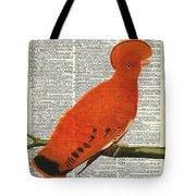American Martinet Orange Parrot Bird Tote Bag by Anna W