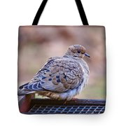 American Mourning Dove Tote Bag