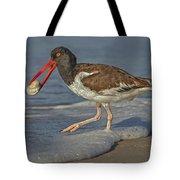 American Oystercatcher Grabs Breakfast Tote Bag by Susan Candelario