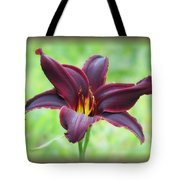 American Revolution With Vignette - Daylily Tote Bag