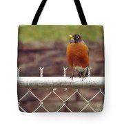 American Robin  In Spring          March            Indiana Tote Bag