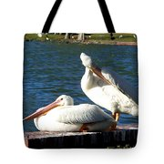 American White Pelican 001 Tote Bag