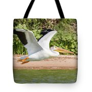 American White Pelican Above The Water Tote Bag