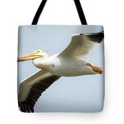 American White Pelican Flyby  Tote Bag
