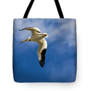 American White Pelican In Flight Tote Bag