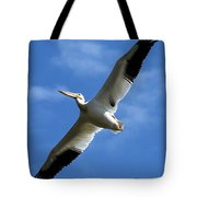 American White Pelican Wings Tote Bag