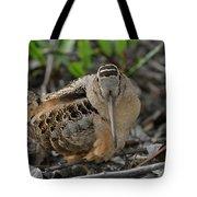 American Woodcock Tote Bag