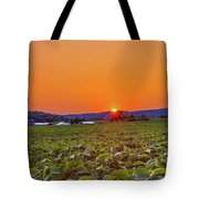 America's Heartland Tote Bag