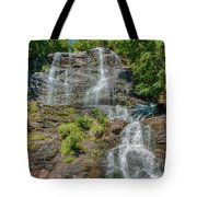 Amicalola Falls Tote Bag